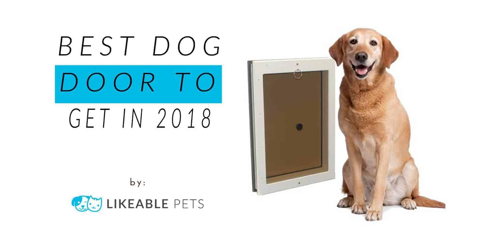Best Dog Door to Get in 2018