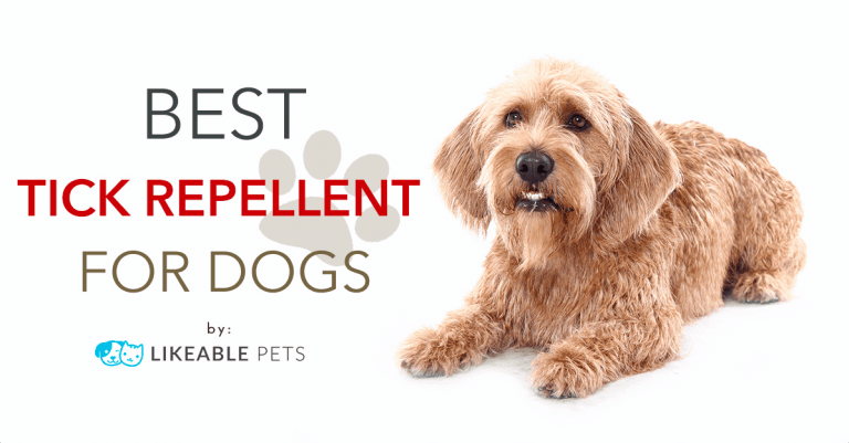 Dog Groomers Tick Repellent for your dog