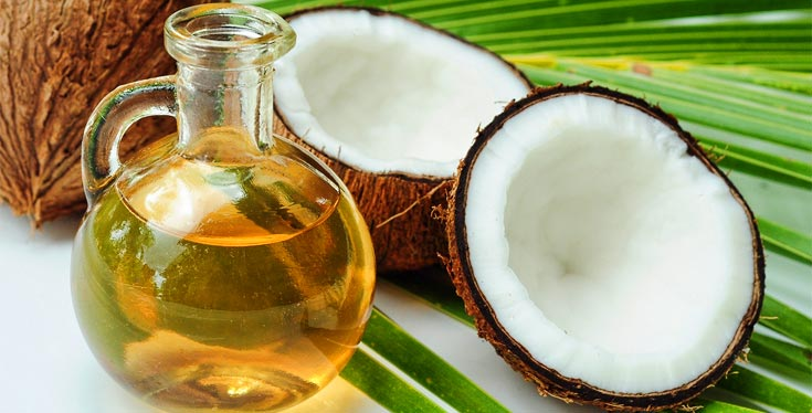 coconut oil benefits for dog in Singapore